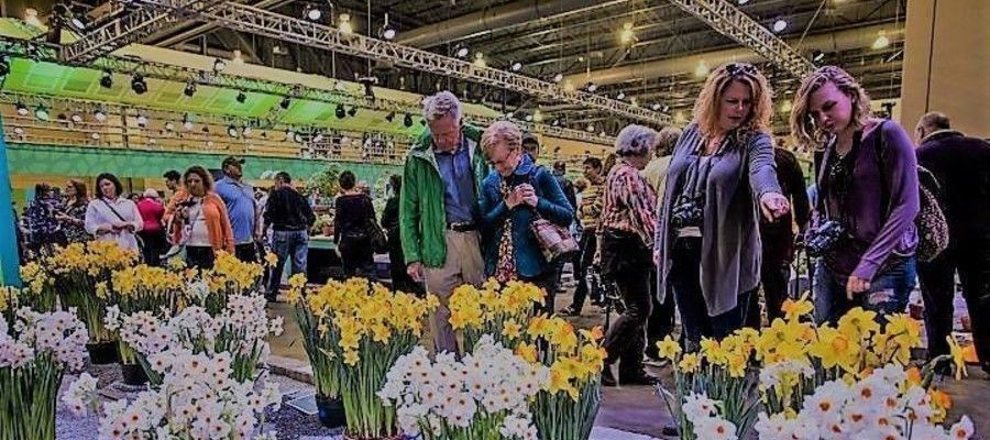 Flower Show Moving Outdoors to FDR Park?