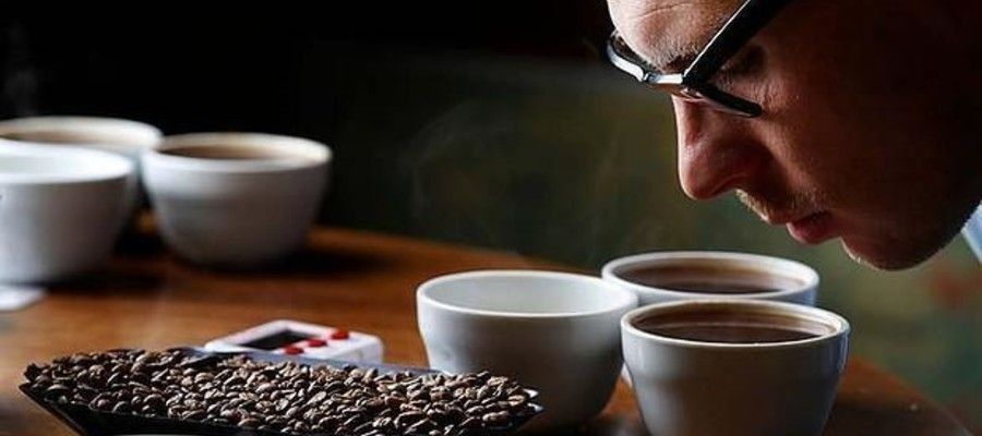 Coffee Cupping Guide: How Professionals Taste Coffee