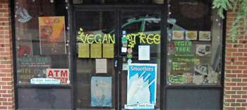 Vegan Tree South Street Philly