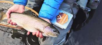 Pennsylvania Mentored Youth Trout Days March 24, April 7